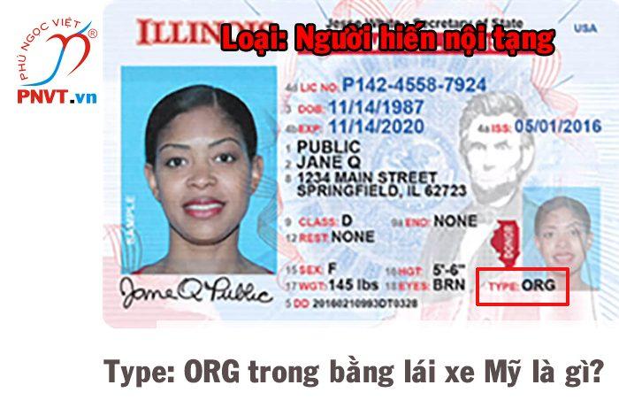 Type: ORG trong bằng lái xe nước Mỹ là gì